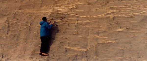 Niveles del Superpatagoniense al sur de Puerto Santa Cruz, Mioceno marino de la Provincia de Santa Cruz. Estudios estratigráficos y colecta de vertebrados marinos