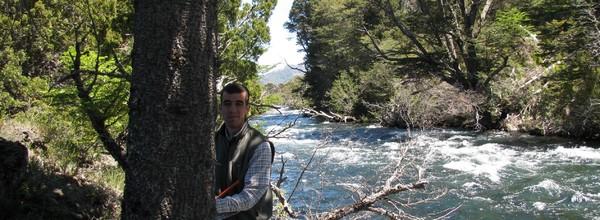 Extracción de tarugos de madera con barreno de incrementos para análisis dendrocronológico de Araucaria araucana. Diciembre 2009