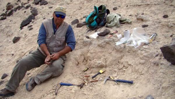 Extrayendo un cráneo de un notungulado en los afloramientos terciarios de la Formación Agua de la Piedra.