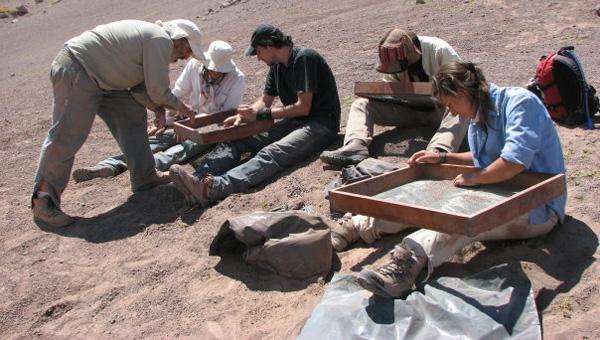 Trabajo de campo: tamizando en busqueda de fosiles en la localidad de Las Hornillas San Juan.