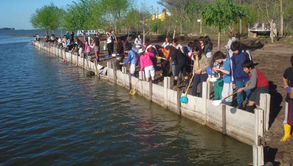 La Vida en las Lagunas - Actividad de muestreo en la Laguna de Chascomús